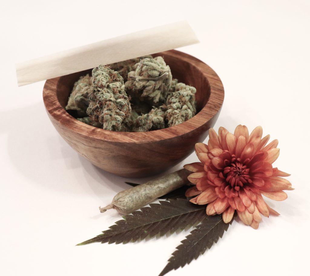 tracing cannabis history